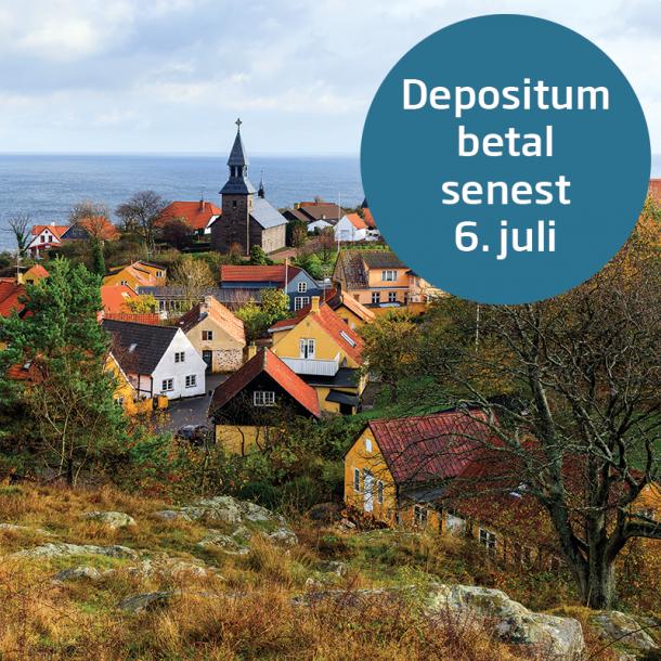 Depositum - betal senest 6.juli