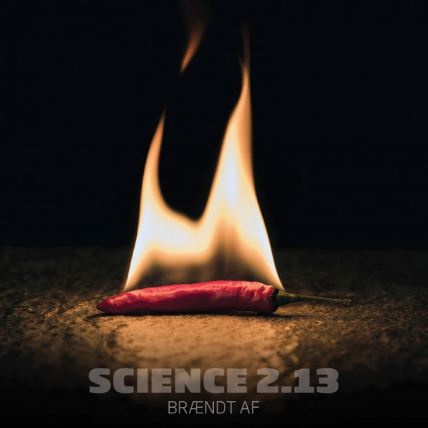 Science 2.13 - Brændt af